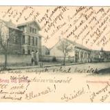 648. Orastie 1902