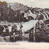 Carti Postale Romania pana la 1904, Necirculata, Fotografie - Romania, Salut, carte postala UPU necirculata1902:Cost.populare, Car cu boi, folklor