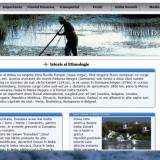 Carte Limbaje de programare - Atestat Informatica Dunarea