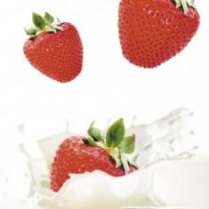 Lapte condensat indulcit - Lactate