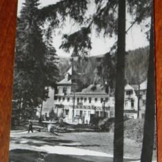 Carte postala BORSEC - vedere din statiune - CIRCULATA 1964 - Carte Postala Transilvania dupa 1918, Printata