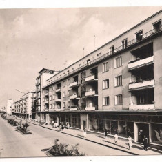 Carti Postale Romania dupa 1918 - Carte postala(ilustrata)-SATU-MARE-vedere