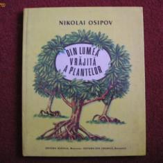 Nicolai Osipov - Din lumea vrajita a plantelor - Carte de povesti