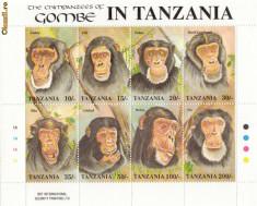 Timbre straine - COLITA TIMBRE TANZANIA MAIMUTE