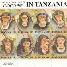 COLITA TIMBRE TANZANIA MAIMUTE - Timbre straine
