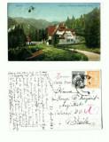 CP107-42 -Sinaia -Vedere cu Floraria Castelului Peles -1924
