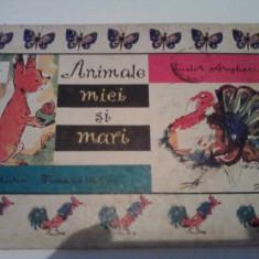 Animale mici si mari - TUDOR ARGHEZI / C15G - Carte personalizata