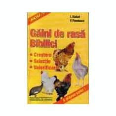 P. Pavelescu, I. Barbat - Gaini de rasa & Bibilici. Crestere, selectie, valorificare. - Carti Zootehnie