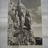 C.P.MUNTII BUCEGI - Brana Portitei - Carti Postale Romania dupa 1918