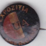 Insigna Expozitia SUA Americana
