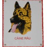 Bricolaj - PLACA CAINE RAU