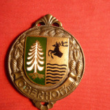 Medalie SKI - Oberhof - Turingia