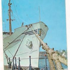 Carte postala(ilustrata) -Motonava Transilvania in portul Constanta - Carte Postala Dobrogea dupa 1918, Circulata, Printata