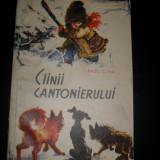 CAINII CANTONIERULUI, ilustratii coca cretoiu, 1963 - Carte educativa