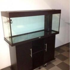 Acvariu JUWEL RIO 240 Litri cu filtru intern
