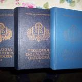 Teologia dogmatica ortodoxa(3 volume)-Dumitru Staniloae