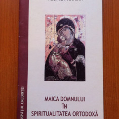 MAICA DOMNULUI IN SPIRITUALITATEA ORTODOXA - Arhimandritul Teofil Paraian - Icoana litografiate