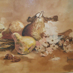 Superba acuarela veche, natura statica cu fructe si flori semnat Jeana - Pictor roman, Realism