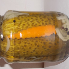 Vand castraveti in otet - Conserve