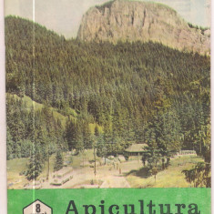 Revista/Ziar - 5A(000) revista-APICULTURA IN ROMANIA august 1989