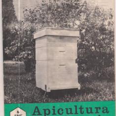 Revista/Ziar - 5A(000) revista-APICULTURA IN ROMANIA iunie 1989