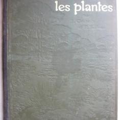J. Constantin / F. Faideau - Les plantes - 1922