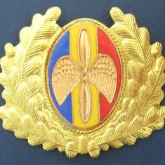 Colectii - Emblema militara 7 (ofiter aviatie, aviator)