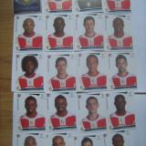 PANINI - Champions League 2009-2010 / Standard Liege (20 stikere) - Colectii