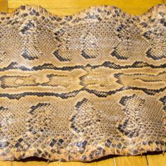 Piele de sarpe Piton tabacita 3, 1 m NEGOCIABIL