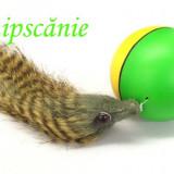 Minge distractiva Beavers Ball - Jucarie pisic, pisoi, pisica, pisici + CADOU