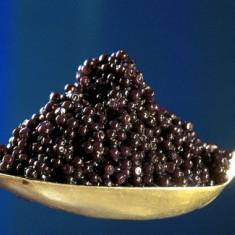 Vand caviar(icre negre) - Peste si fructe de mare