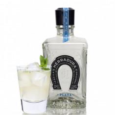 Tequila Agavita HERRADURA PLATA