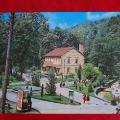 Aug15 - Vedere/ Carte postala - Baile Moneasa - Carte Postala Banat dupa 1918, Circulata, Printata