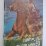 Intimplari din Muntii Stancosi(carte de colorat) / desene de D.Ristea / C60P