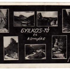 LACUL ROSU SI IMPREJURIM =GYILKOSTO ES KORNYEKE - Carte Postala Transilvania dupa 1918, Circulata, Fotografie