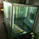 Acvariul de 600 litri pentru pesti