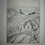 "Tablou, Abstract, Cerneala, Abstract - GRAVURA MARCEL CHIRNOAGA-""DEALURI"" / EXEMPLAR NUMEROAT 4/20"