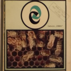 Carte hobby - Cora Rosenthal - Lucrari in stupina (1973)