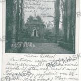 28 - Litho, ORSOVA, Park - old postcard - used - 1900
