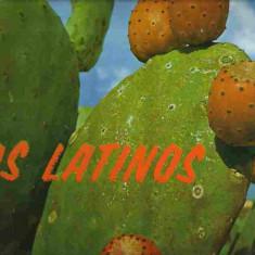 LOS LATINOS (DISC VINIL, LP) - Muzica Latino Altele