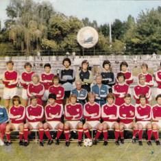 Foto echipa de fotbal DINAMO BUCURESTI