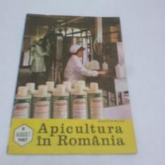 Revista/Ziar - REVISTA APICULTURA ÎN ROMÂNIA NR.8- AUGUST 1987