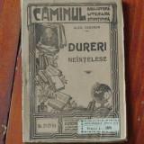 carte Biblioteca literara stiintifica Caminul - Dureri neintelese de Al. Cazaban