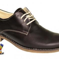 Pantofi barbati Aegis, Piele naturala - Pantofi PIELE NATURALA 39-45 negri maro