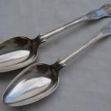 Doua linguri mari argintate