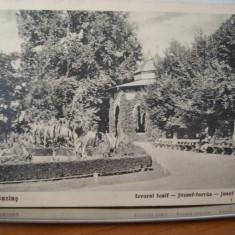 Vedere Buzias Izvorul Iosif 1936 - Carte Postala Banat 1904-1918