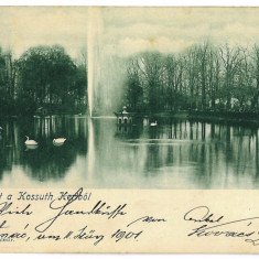 3257 - L i t h o, SATU-MARE, Park - old postcard - used - 1901 - Carte Postala Maramures pana la 1904, Circulata, Printata