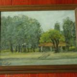 Tablou rama de lemn cu sticla - pictura in ulei , semnat - 1983 peisaj Herastrau