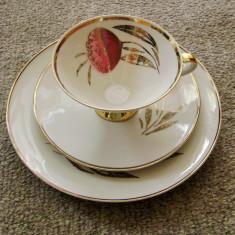 Set / Serviciu - mic dejun - portelan Bavaria - Mitterteich - 1951, Decorative