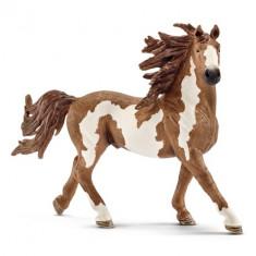 Figurina Schleich - Armasar Pinto - Sl13794 - Figurina Animale